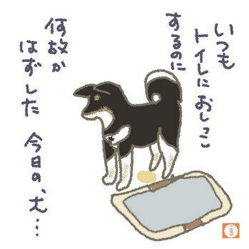 しつけ3トイレ.jpg